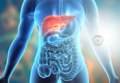 Rolle von Cannabinoiden bei gastrointestinaler Mukositis
