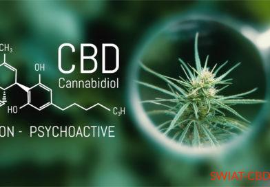 CBD vs. ADHS (psychomotorisches Hyperaktivitätssyndrom)